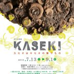 KASEKI-カセキはキセキの贈りもの